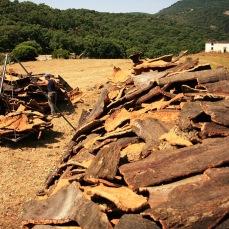 corcho de extremadura venta www.corchoextremadura.wordpress.com (26)