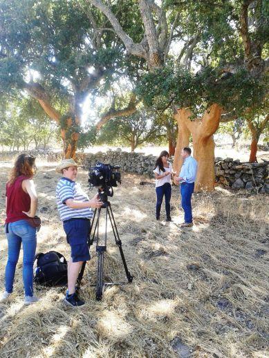 antena3noticias-corcho-extremadura-corck-comprar-reportaje-corcho-online-6
